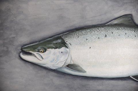 Fish trophy painting Thomas Weiergang